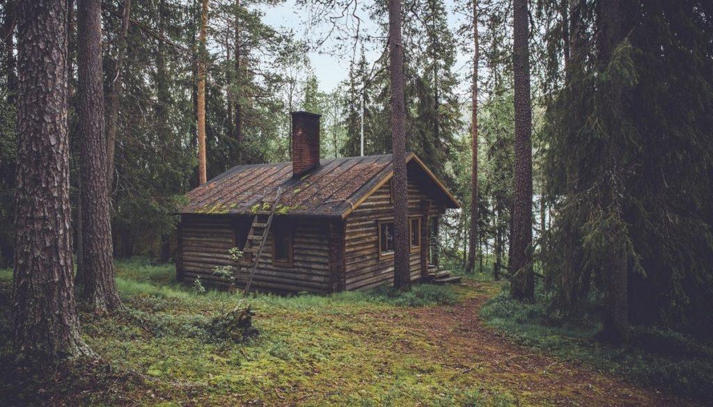 sjekkliste hytte - trær